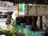 Mucche in Thailandia