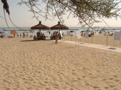Palme ombra disabili spiaggia a montesilvano
