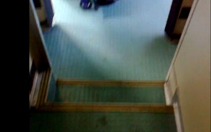 denuncia trenitalia bagno disabili