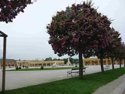 Schˆnbrunn foto giardino