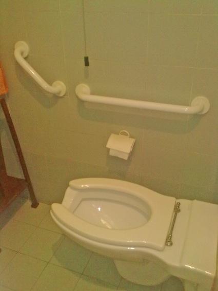 wc accessibile